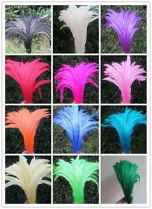 Wholesale-beautiful-rooster-tail-feathers-10-12-inches-25-30-cm-diy-decoration