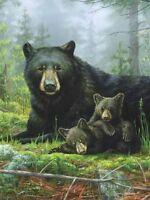 James Hautman Nap Time Bears Raschel Plush 60x80 Twin Size Throw/blanket