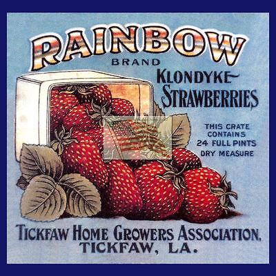 REPRINT PICTURE fruit crate label RAINBOW KLONDYKE STRAWBERRIES tickfaw la 6x6