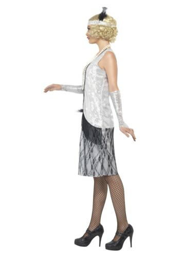 CL253 Ladies 20s 1920s Silver Flapper Chicago Charleston Fancy Dress Up Costume