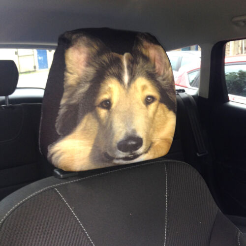 Collie Hund Design Autositz Kopfstütze Bezüge Pack Zwei Zubehör Geschenk