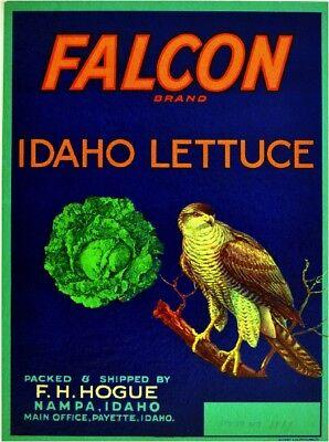 Payette Idaho Falcon Bird Apple Apples Fruit Crate Label Art Print