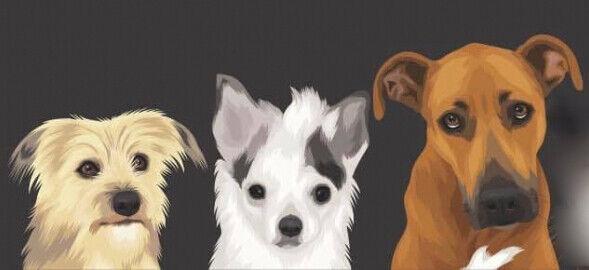 girlsandtheirdogs
