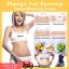 Mango-Ginger-Anti-Fat-Slimming-Cream-Body-Cellulite-Burning-Slim-Gel-Weight-Loss thumbnail 1