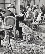 1930/66 Vintage MAN WOMAN & CHEETAH France Photo Art 11x14 By ALFRED EISENSTAEDT