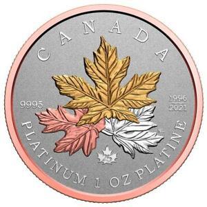 Kanada 300 Dollar 2021 Maple Leaf - Rosé- und Gelbgold veredelt - 1 Oz Platin RP