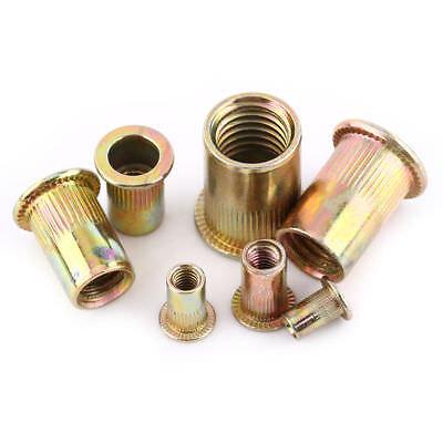 M3-100pcs Carbon Steel Flat Metric Threaded Rivet Nut Flange Rivnut Nutsert Fastener M3//M4//M5//M6//M8//M10//M12