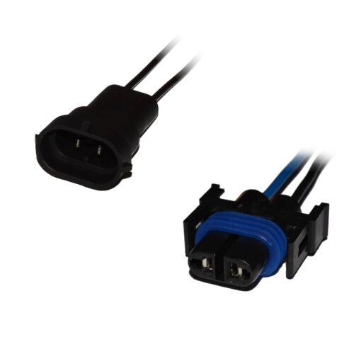 H11 h8 conector versión zócalo lámparas zócalo conector auto KFZ cable