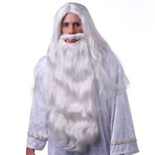 High Quality White Wizard Wig u0026 Beard Costume Set Gandalf Merlin Magician Adult  sc 1 st  eBay & Wizard Gandalf Merlin Magician Zeus Long Wig and Beard White Costume ...