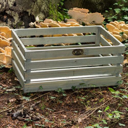 Obst /& Gemüse als Übertopf stapelbar Große Vintage Holzkiste für Dekoration
