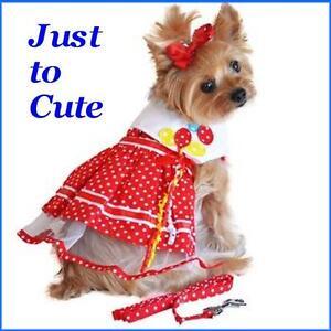NEW-Designer-Red-Dot-Balloon-Dog-Harness-Dress-w-Matching-Leash-FREE-TOY-M