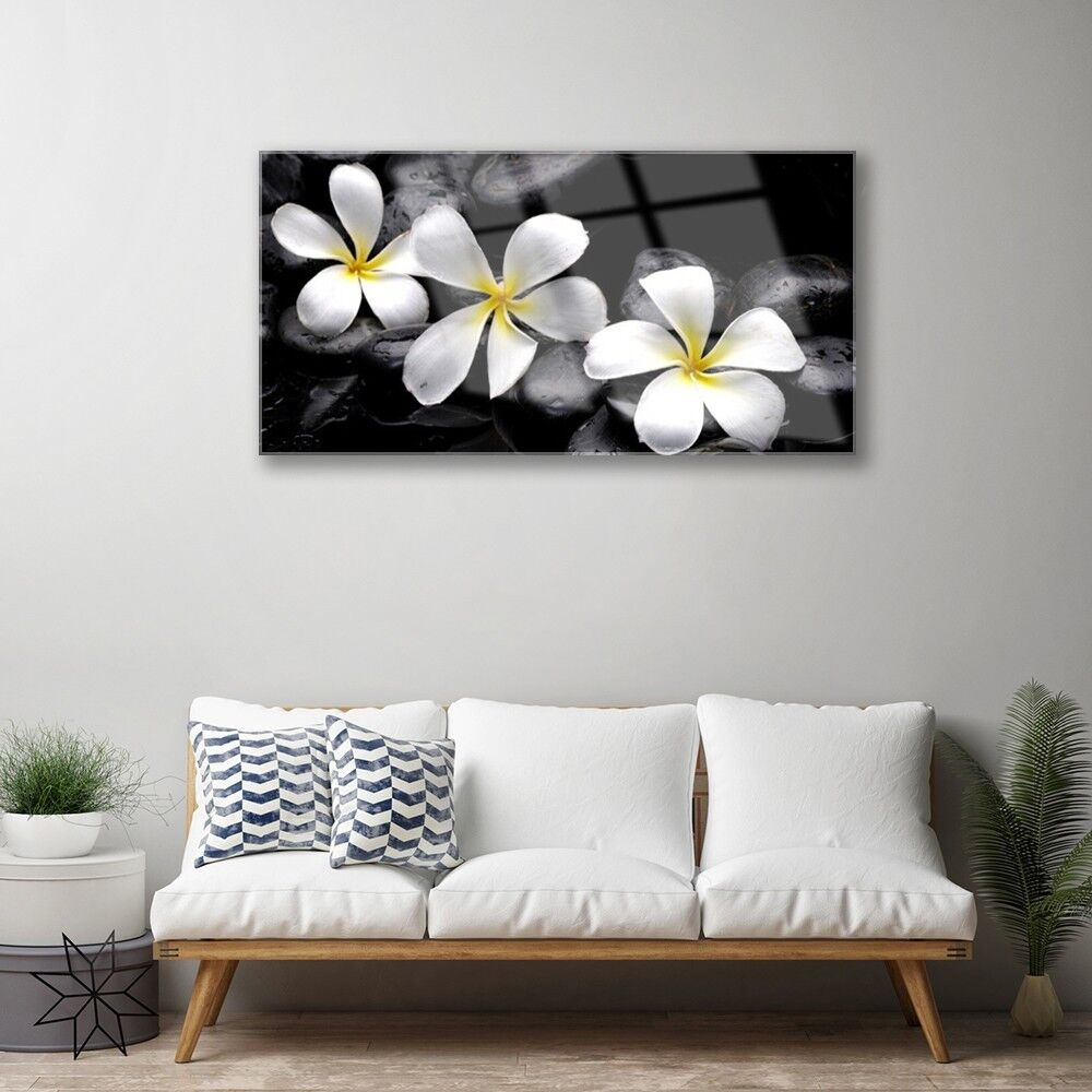Glass print Wall art 100x50 Image Image Image Picture Flower Stones Floral 091abf