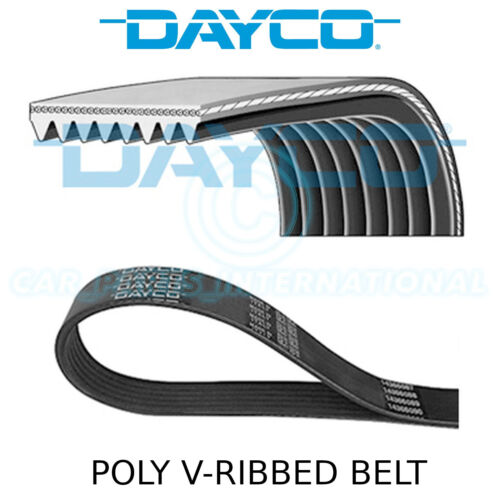 Drive Multi-Ribbed Belt 8PK2585 Fan Auxiliary Dayco Poly V Belt 8 Ribs