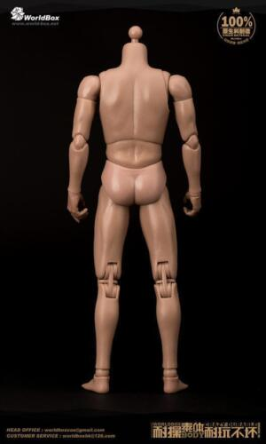 """Worldbox 1//6 Scale 12/"""" AT011 Narrow shoulders Standard Male Body Fit HT Head"""