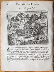 Marcus-Gerards-Fabels-Animals-Snake-and-Hedgehog-1617