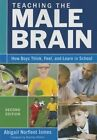 Teaching the Male Brain: How Boys Think, Feel, and Learn in School by SAGE Publications Inc (Paperback, 2015)