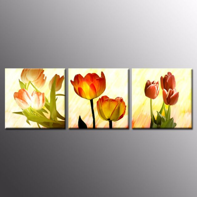 FRAMED CANVAS PRINTS Poster Flower Pictures  Wall Art For Home Room Decor-3pcs