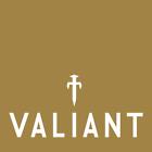 valiantfiresideaccessories
