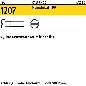 100 Kunststoff Schlitz Zylinderschrauben ISO 1207 Polyamid M6x70