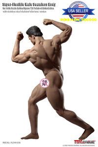 TBLeague PHICEN M35 1//6 Scale SUPER Muscular Seamless Male Figure U.S.A SELLER