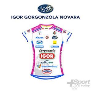 Dettagli su Seconda Maglia gara volley Mikasa Ufficiale Gorgonzola Novara donna MT275 0019