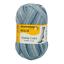 Regia 4fädig Color 100g Sockenwolle Farbe 01174 grigio marble color