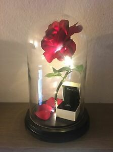 Image Is Loading Beauty And The Beast Enchanted Rose LightUp Rose