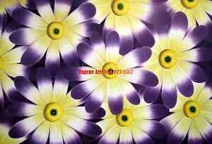 61x91.4cm100% Peint à La Main Huile Plat, Fleur, Fleuriste,