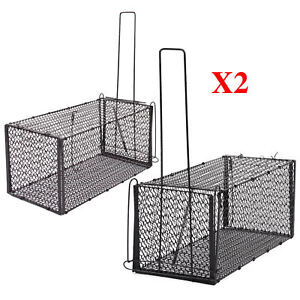 2x-Large-Mouse-Rat-Catcher-Cage-Trap-Humane-Live-Animal-Rodent-Indoor-Outdoor