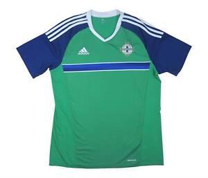 Irlanda del Nord 2016-17 ORIGINALE Maglietta (eccellente) L soccer jersey