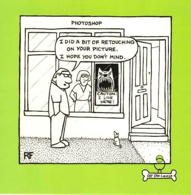 Vicious Dog Square Cartoon Humour Greeting Card Blank Inside Off The Leash Cards