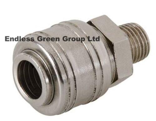 air compressor airline hose tool fitting EU552 EURO Quick Coupler MALE 1//4 bsp