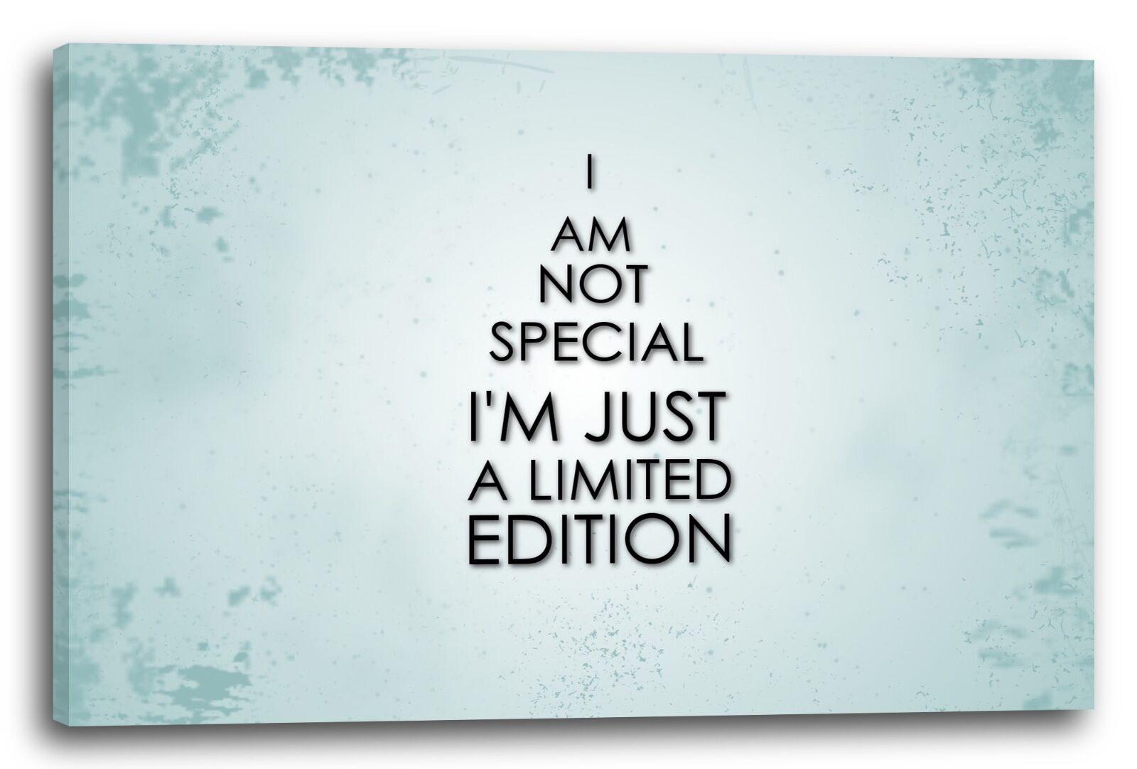 Lein-Wand-Bild Kooler Spruch, ich bin limited edition, Zitate Quotes funny witzi