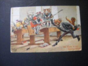 Arthur-Thiele-Edwardian-anthropomorphic-cat-postcard-teacher-chasing-mouse
