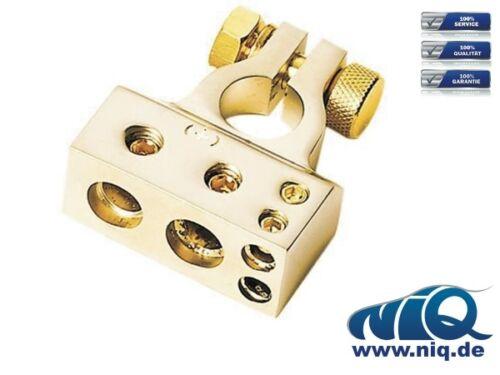 2 x 10 mm² plus Pol gold 1 x 20 mm² Batterieklemme 1 x 35 mm²