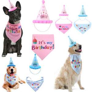 Image Is Loading US Birthday Hat Scarf For Dog Cat Puppy