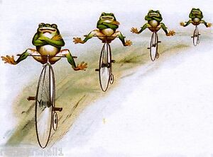 Frogs on Bicycles J & P Coates Sewing Victorian Trade Cards Poster Advertisement
