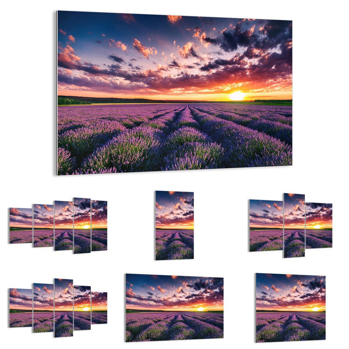 GLASBILD Wandbild Deko Lavendel Berge Feld 3816 DE