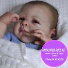 Preemie reborn doll kit~ sweet baby kit to make your own doll~ Tayla reborn kit
