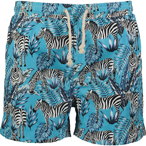 Mens Havacoa Swim Shorts Trunks bluee Zebra Authentic New RRP  Boxer M, L & XL