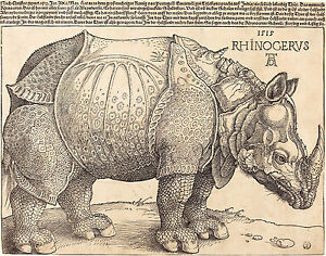 Albrecht-Durer-Painting-The-Rhinoceros-Large-12-2-034-x16-034-Fine-Art-Print-On-Canvas