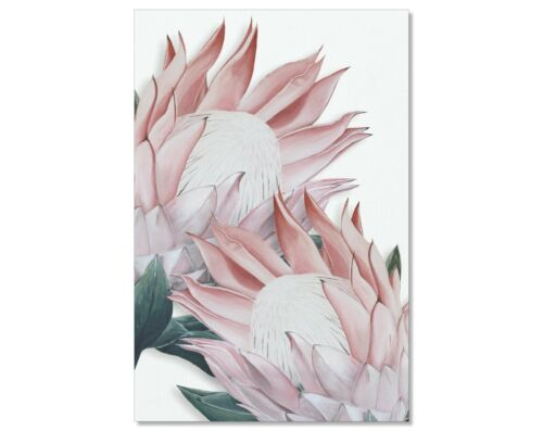 Pink Pro Flower Digital Download Art Print. Brand New. Various Sizes