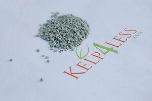 Zeolite small Granular 2 lbs Bulk Natural Zeolites Soil Plants