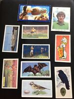 G6-1 Trade Cards X 10 Assorted Sweetule Tiger E T Junior Service Birds Sport