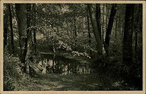 Bad-Nauheim-Hessen-alte-AK-1922-Waldpartie-am-Teich-herbstliche-Waldeinsamkeit