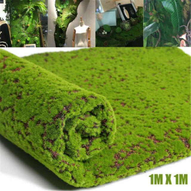 Micro Landscape Artificial Grass Home Floor Decor Innovative Aquarium Lawn Moss For Sale Online Ebay