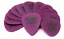Dunlop-Tortex-STANDARD-Guitar-Picks-12-Pack-Red-Orange-Yellow-Green-Blue-Purple thumbnail 7
