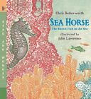 Sea Horse: The Shyest Fish in the Sea by Chris Butterworth (Paperback / softback, 2009)