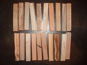 20 Woodturning Pen Blanks.Yew Apple Acacia Laburnum Walnut Beech Holly Lime Pear