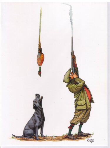 Bryn Parry Game Day Pheasant Shooting Pack 10 note cards invitation thank you